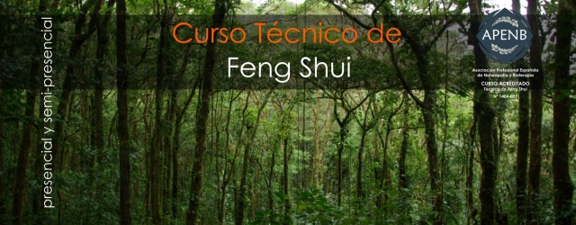 Técnico en Feng Shui