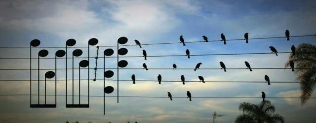 Música, Maestros !