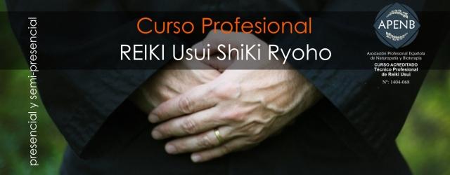 Técnico Profesional en Reiki Usui