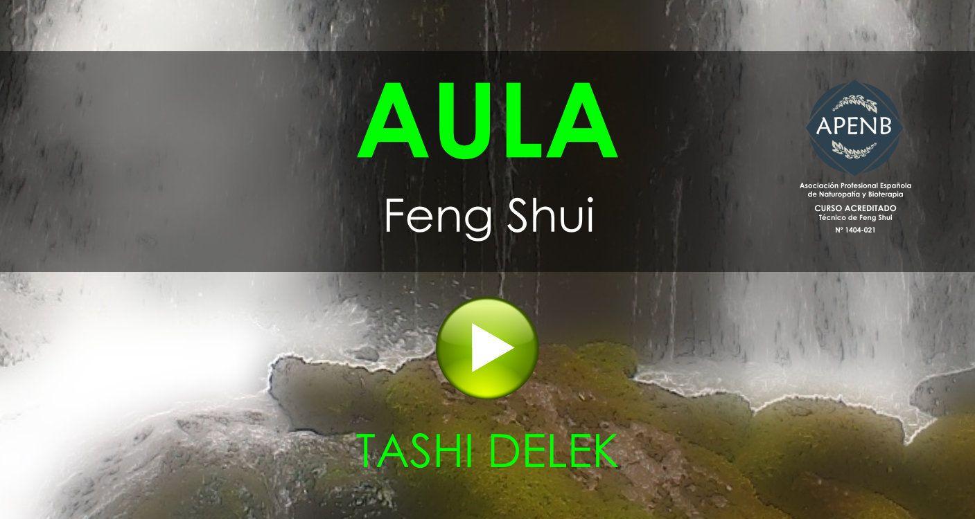 Aula Virtual del Curso de Feng Shui