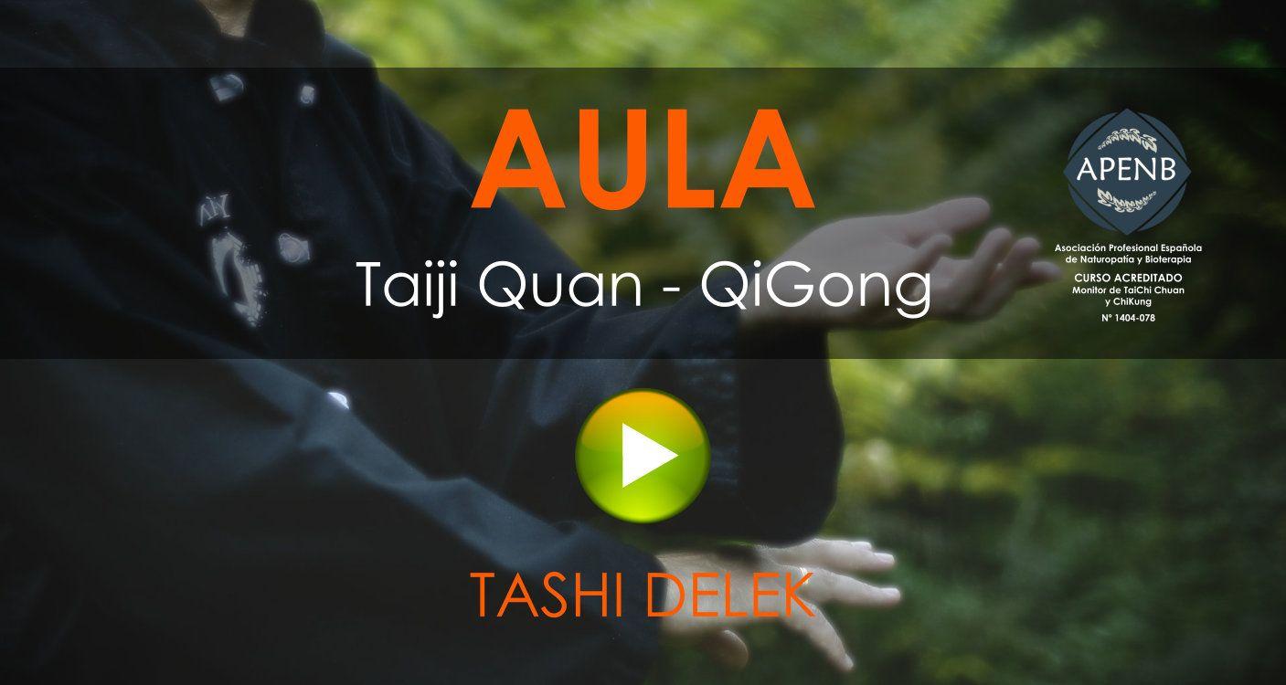 Aula Virtual del Curso de Monitor TaiJi Quan y QiGong