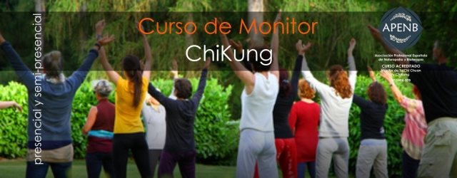 Monitor de ChiKung