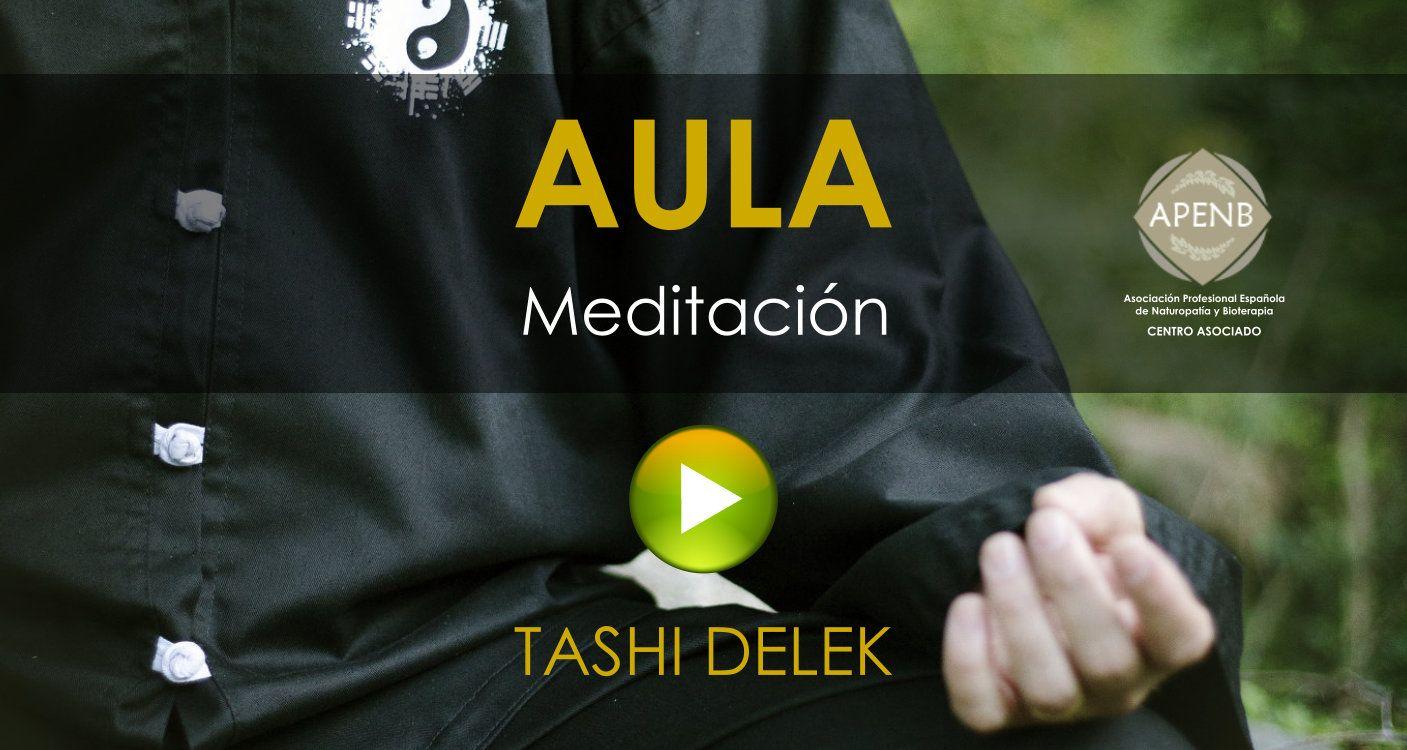 Aula Virtual del Curso de Meditación