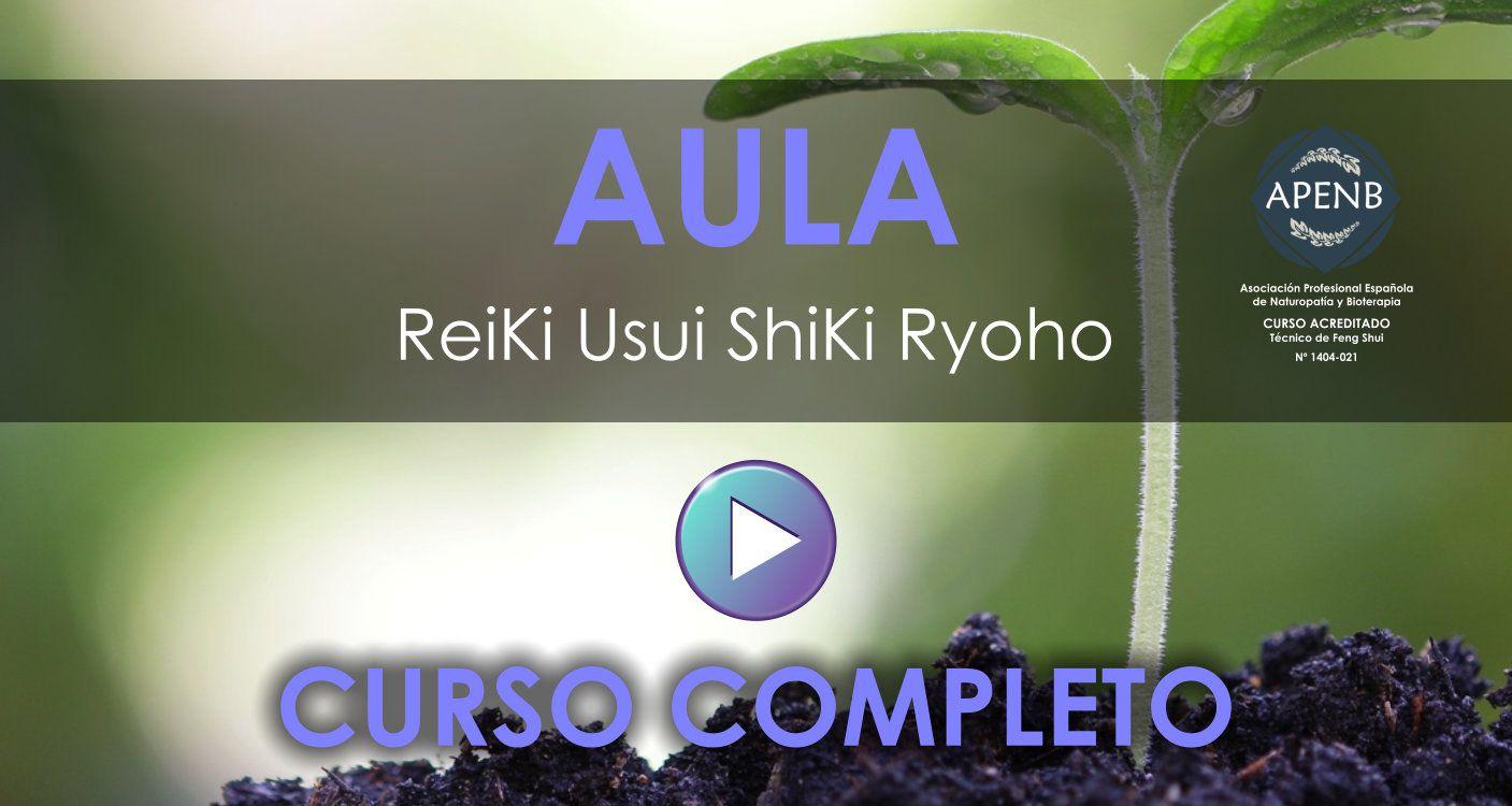 Aula Virtual del Curso de Reiki Usui - Completo
