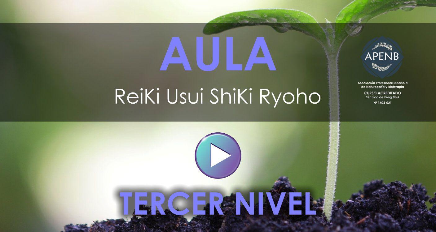 Aula Virtual del Curso de Reiki Usui - Tercer Nivel