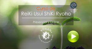 Curso de Reiki Usui