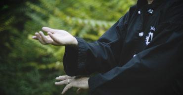 Beneficios del TaiChi   Yùyán