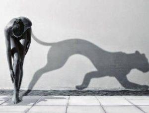 La Sombra Poderosa Aliada e1420116196434