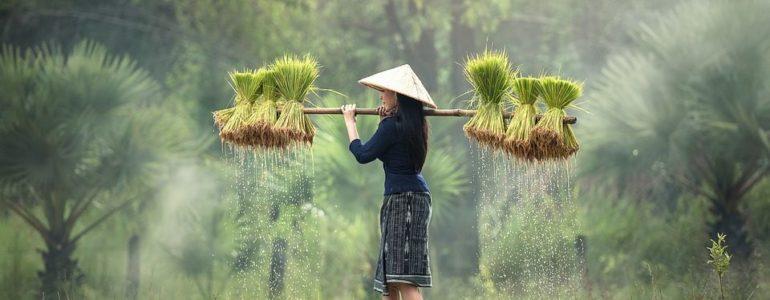 yuyan taichi equilibrio mujer